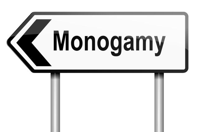 monogamy definition