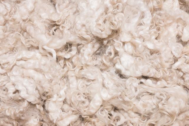merino wool clothing women's
