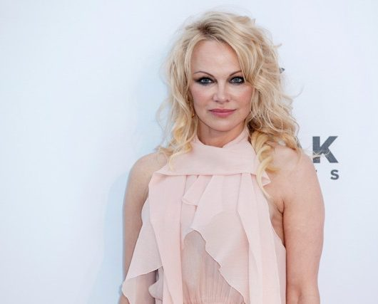 pamela anderson married